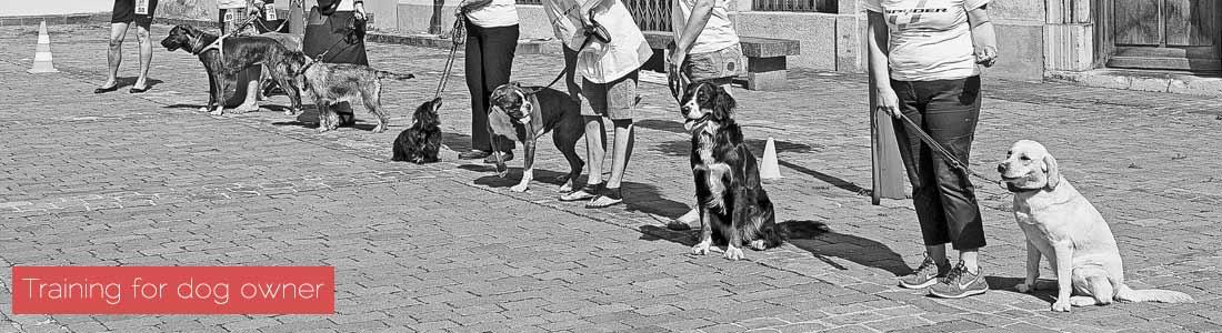 Dog owners-Monthey-Switzerland